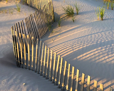 Dune Fence - After