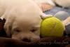 Me 'n My Ball