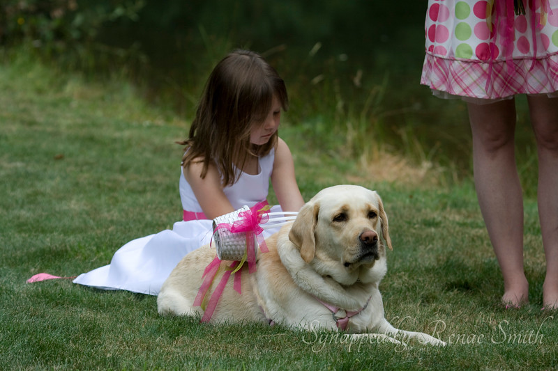 Sassy, the Ring-bearer Dog!