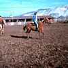 Marvin Roberts place in Natividad - January 1965 - far horse is Brandy with Ellen riding, middle horse is Tammy with Sid Auker riding and Carol and Smoochy in the lead!!