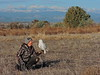 Ann Price and the Snowy Owl