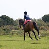 United Against Dementia Horsewoman on Greenham Common