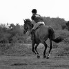 United Against Dementia Horsewoman on Greenham Common bw