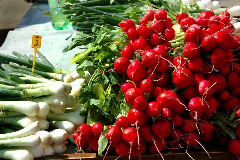 006-Zagreb-radishes-onions-DSC_3152