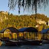 Rowboats, Lake Bled