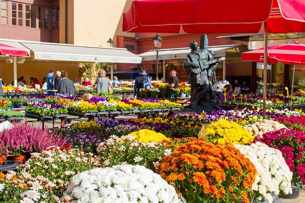 Flower market, Zagreb