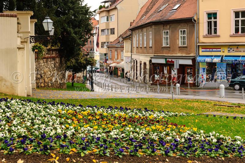 A flower garden and street in Zagreb, Croatia.