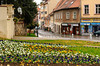 A flower garden and street in Zagreb, Croatia.