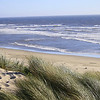 The Dunes; Oregon Coast near mouth of Siltcoos River
