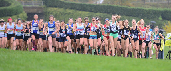British Athletics Cross Challenge at Milton Keynes