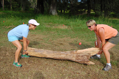 Holy Comforter XC Coaches Holly Moody and Tricia Rizza get to work on their brand spanking new cross country course. They're blocking off a section of the course at the 730m/2Km point where the trail splits. I would have helped, but didn't want to risk breaking a nail.