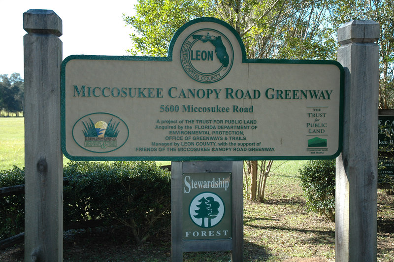 "Welcome to the Edenfield trailhead of the ~7M long Miccosukee Canopy Road Greenway! The Greenway extends west another 1.5M+ to Fleishmann Road, and east 5M+ past I-10 to Crump Road. The Edenfield area has the lowest elevation of this ""linear"" passive park.  http://www.leoncountyfl.gov/parks/greenways.asp"