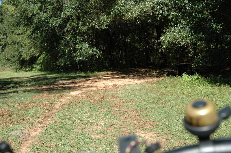 2150m<br /> [Anti-clockwise East Loop]<br /> Leaving the Butterfly Meadow.