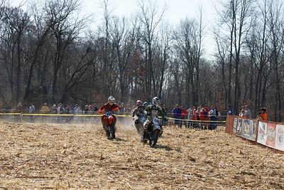 Gosport Races