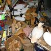 A Mess of Ducks