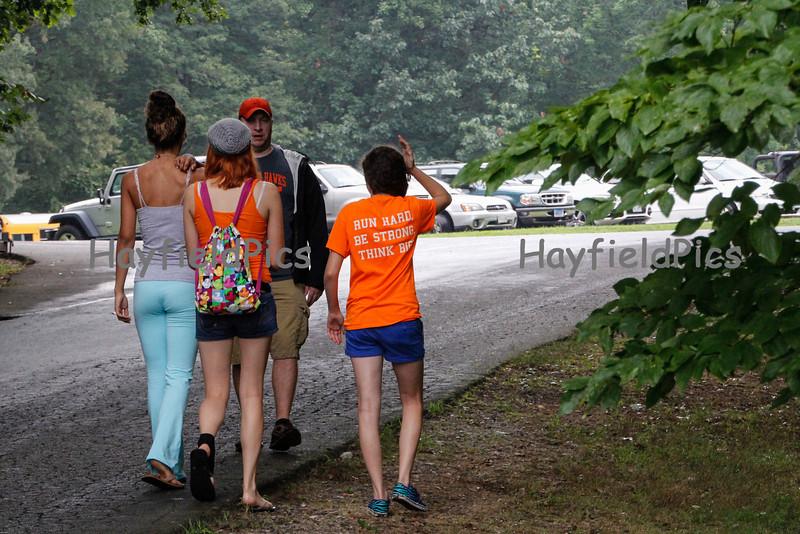 Hayfield-8086