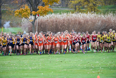 2016 - Macalester Cross Country runs at MIAC Conference Meet   -- Copyright Christopher Mitchell / SportShotPhoto.com