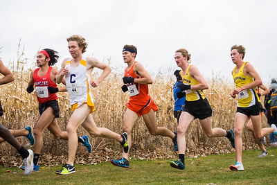 2019 - Macalester College Cross Country at MIAC Conference Meet hosted at Carleton College