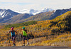 The U.S. Cross Country Ski Team athletes trains with roller skis on the Olympic trails at Soldier Hollow near Midway, Utah <br /> Photo: Pete Vordenberg/U.S. Ski Team