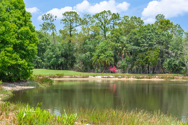 Cross Creek Golf Course-11
