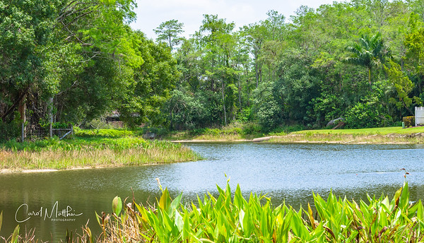 Cross Creek Golf Course-4