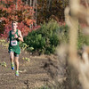 The boys and girls Mid Wach League Cross Country Championships where held at Hollis Hill Farm in Fitchburg Saturday, Oct. 26, 2019. Nashoba Regional High School's #380 Dylan Whalen. SENTINEL & ENTERPRISE/JOHN LOVE