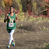 The boys and girls Mid Wach League Cross Country Championships where held at Hollis Hill Farm in Fitchburg Saturday, Oct. 26, 2019. Nashoba Regional High School's #378 Ailin Oberlies. SENTINEL & ENTERPRISE/JOHN LOVE