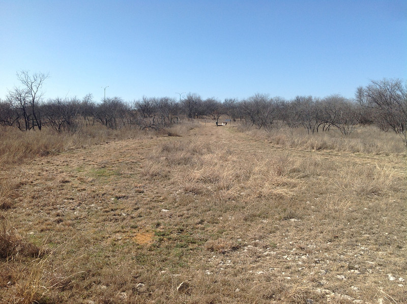 Looking north, this is where our church will be built in this space.