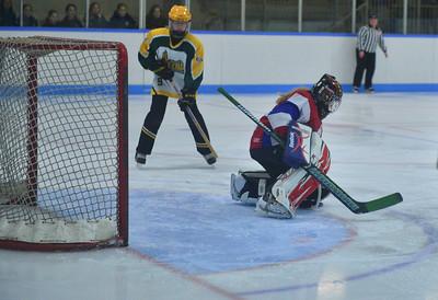 Ottawa Glouscester Tournament Feb.6-8, 2015