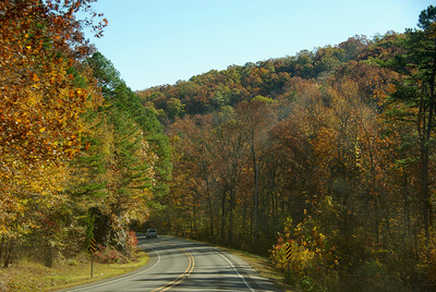 pretty fall colors in NW Arkansas
