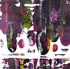 eggplant-blk-green velocity-iorillo 50x50 canvas