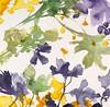 Periwinkle Blooms-Jardine