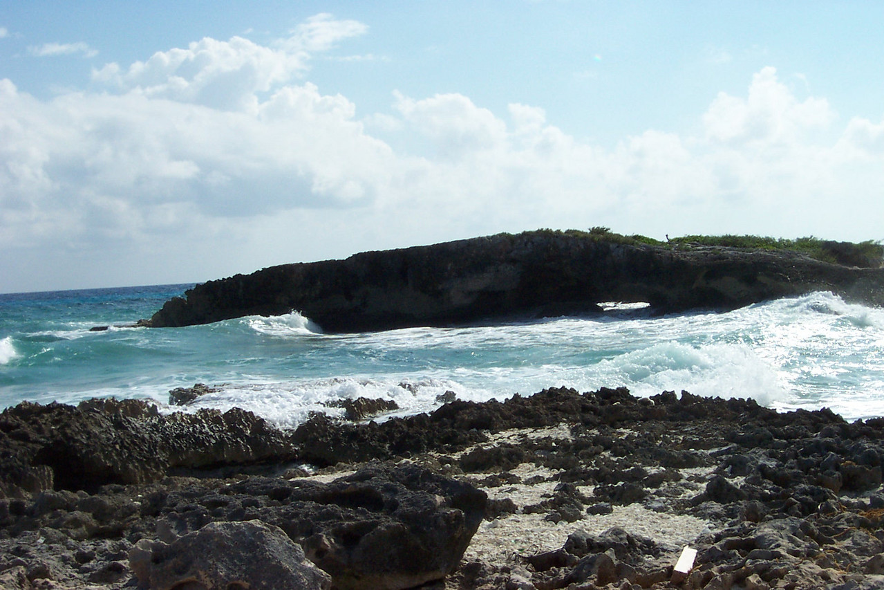 Believe me, you don't want to sunbathe on these jagged rocks on the east side of the island!<br /> [Cozumel, Mexico]