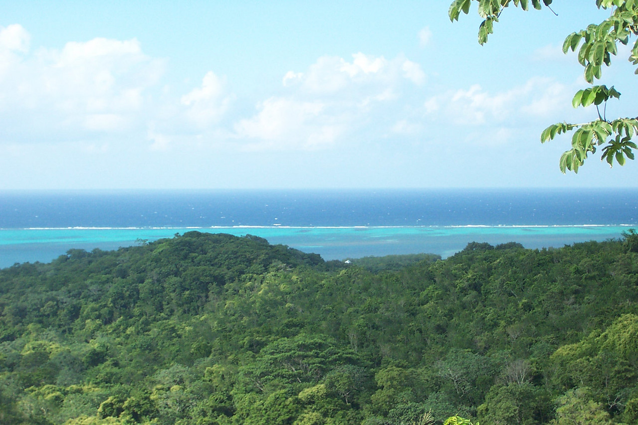 You have a good view of the island's coral reef from up here.  Such amazing and beautiful colors in the water!<br /> [Roatan, Honduras]