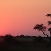 We mentioned earlier the sunsets are amazing in Africa, didn't we!! :-)