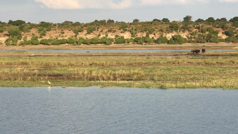This video gives you a feel of the Beautiful scenery & wildlife that can be seen right from the comforts of the Zambezi Queen.