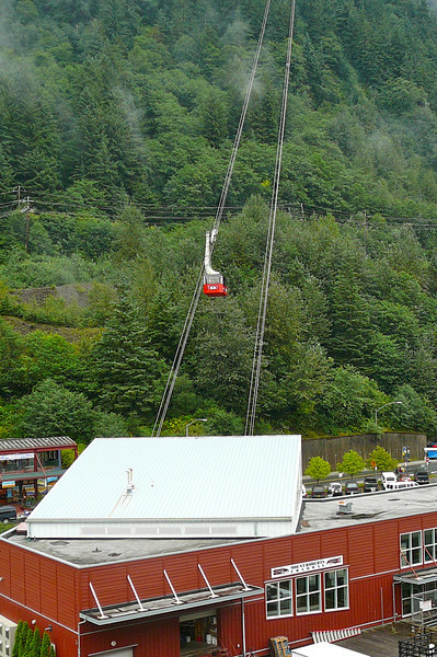 "During your ""Excursion"" planning for Juneau, you'll see the ""Mt Roberts"" Tram option. As you can see, it's a simply accessed tour that leaves right from the Cruise dock. Tip: Don't book this excursion in advance as you'll only want to do it if the Weather is nice. If it is, simply buy your Tram ticket, for less, when you get off the Ship."