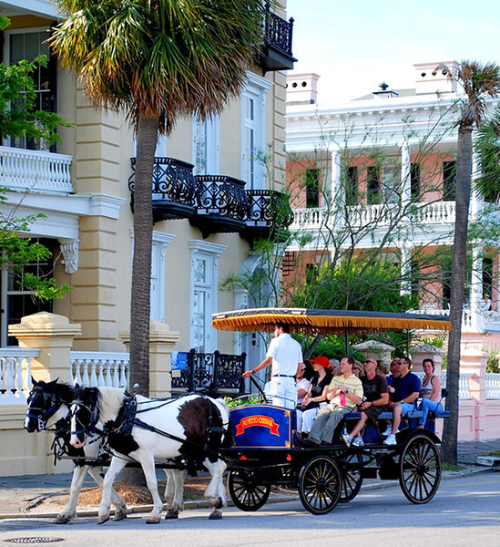 Charleston was a very charming city... as it's quite an Old City, established in the 1600s, it had so much history & beautiful architecture there... much of it can be experienced by enjoying a trolley, or even better, Horse & Carriage tour like above!