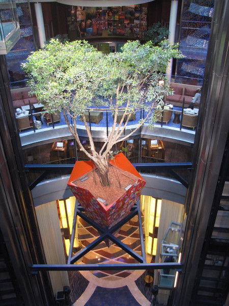 "One of the most unique features on ""Solstice"" is the real tree that hangs around 10 stories above the atrium... this pic probably doesn't do it much justice but it's pretty cool to see in person!! :-)"