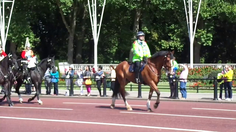 "Check out what to expect at the ""Changing of The Guard""... Click Play & see some of the Beautiful Horses that are part of this unique event."