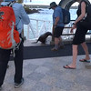 And click play here to see a Sea Lion sauntering up a loading ramp from the water.