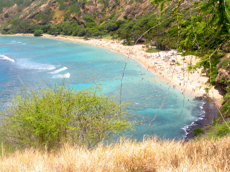 "After our hike up Diamond Head it was time to do some snorkeling in Oahu's popular ""Hanauma Bay""... check out the color of the waters that flow into the Bay... very nice! :-)"