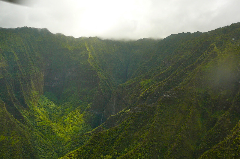 """Remember we mentioned how Kauai is lush. Here we are on top of """"Mount Wai'ale'ale"""" where there's more rainfall then anywhere else on earth... (even Vancouver :-) over 460 inches of rain per year."""