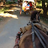 Here's some video of what our Horse Carriage ride was like.