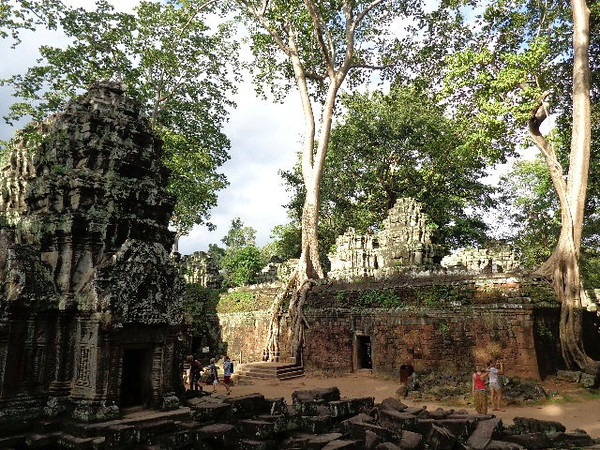 "Out of all the temples, for sure ""Ta Prohm"" (known as the Jungle Temple) was the most unique as it's literally buried amongst trees & other vegetation... it certainly makes for one mystical & beautiful place!!"