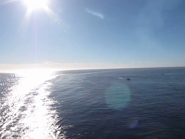 Here's some Video footage of Nancy enjoying our arrival (and the Gorgeous Sun) into Cabo San Lucas... a popular stop on just about every Cruise going up & down the Mexican Riviera.
