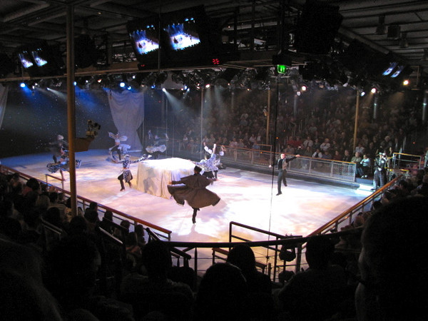 We mentioned earlier the Mariner even has an Ice Skating Rink onboard... well, not only can you go Skating out there but they have live Skating Shows a couple of times during your Cruise as well.