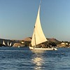 "When Cruising the Nile for sure you'll see lots of ""feluccas"" like above which are traditional Egyptian sailboats."