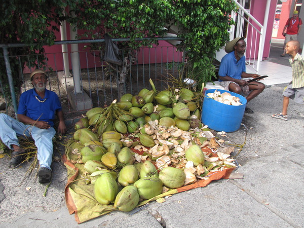 Fresh coconuts in Antigua... yumm! :-)