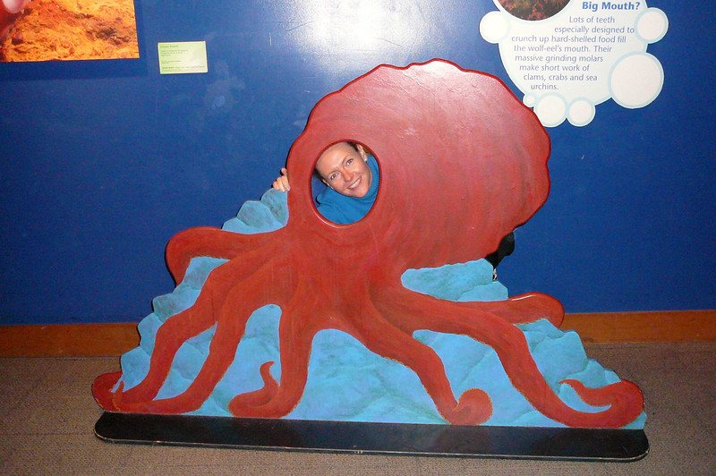 The Seattle Aquarium is definitely worth a visit if you have some extra time in Seattle... here's Nancy having some fun seeing what it'd be like to be an Octopuss. :-)